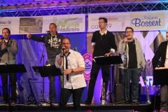 2015 - Cityfest Mühlacker
